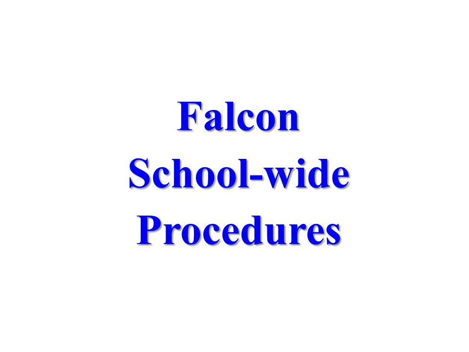 FalconSchool-wideProcedures