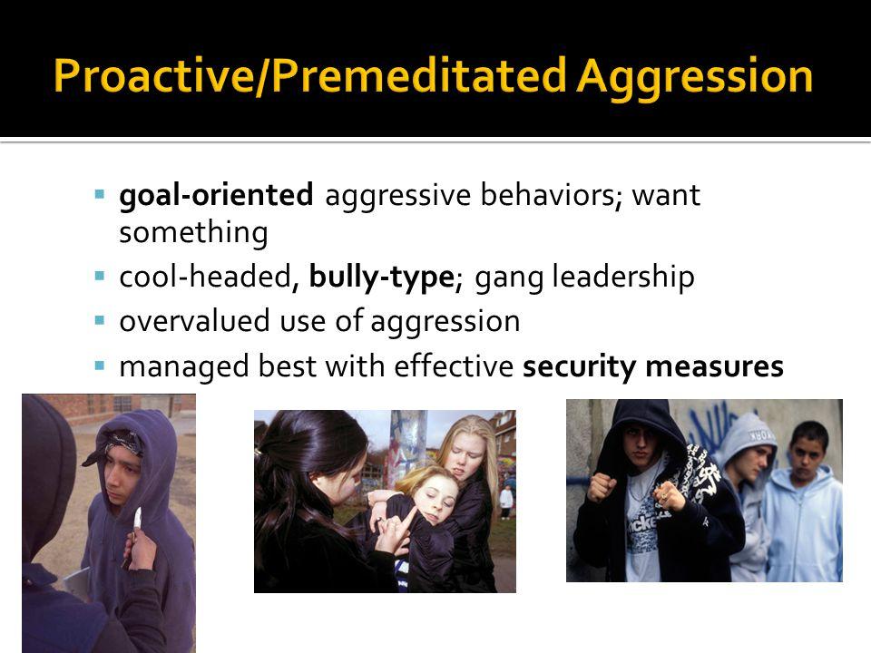  http://www.directbehaviorratings.com/cms/ http://www.directbehaviorratings.com/cms/