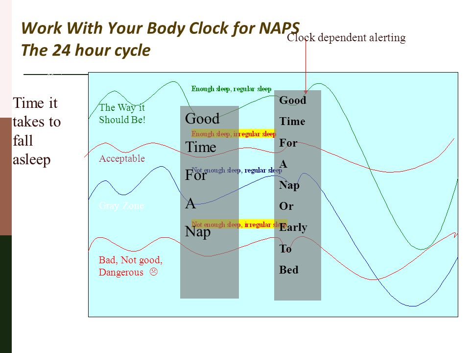 Work With Your Body Clock for NAPS The 24 hour cycle Clock dependent alerting Time it takes to fall asleep Bad, Not good, Dangerous  Gray Zone Accept