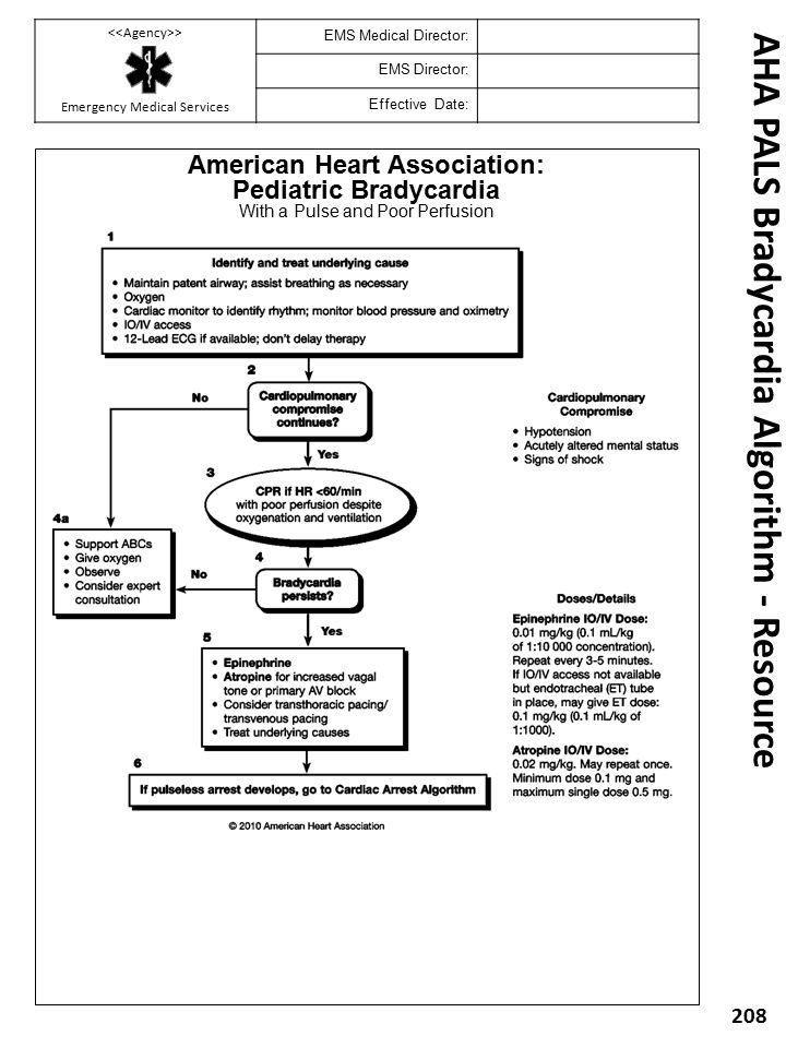 American Heart Association: Pediatric Bradycardia With a Pulse and Poor Perfusion AHA PALS Bradycardia Algorithm - Resource 208 > Emergency Medical Se