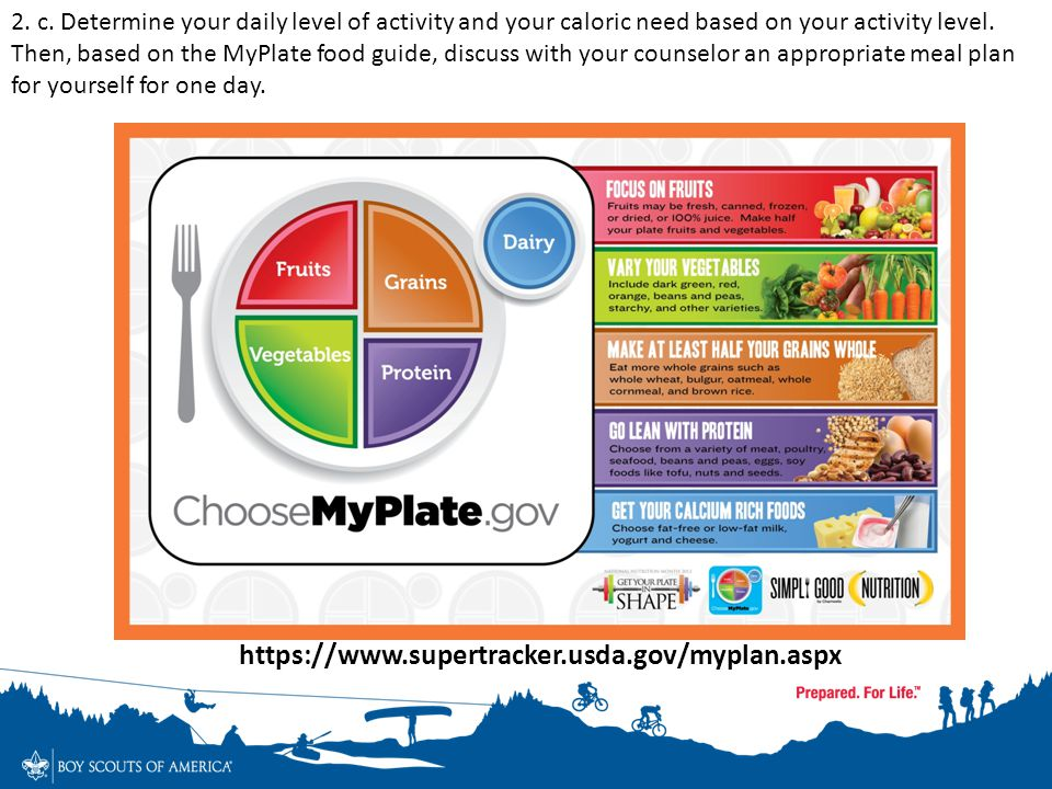 This plan shows your daily food group targets — what and how much to eat within your Calorie allowance. Enter your meals in Food Tracker to see how yo