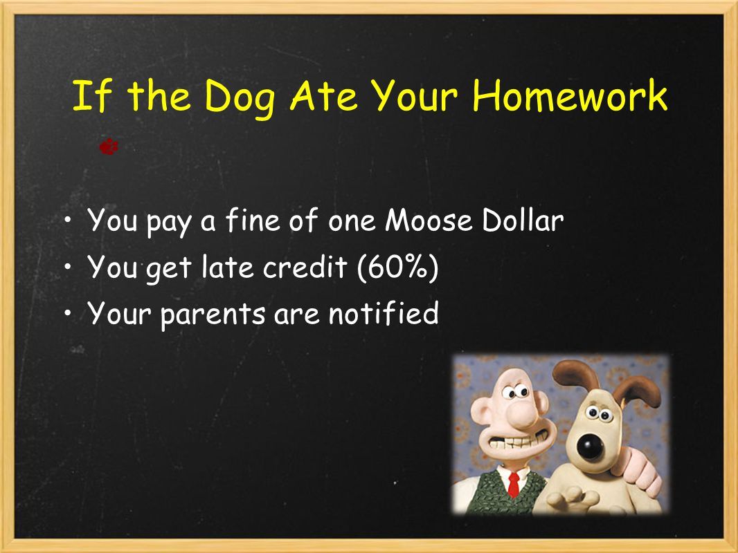 If the Dog Ate Your Homework You pay a fine of one Moose Dollar You get late credit (60%) Your parents are notified