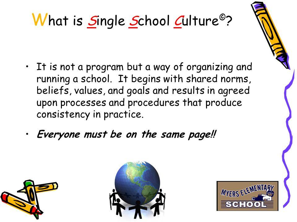 W hat is Single School Culture © .