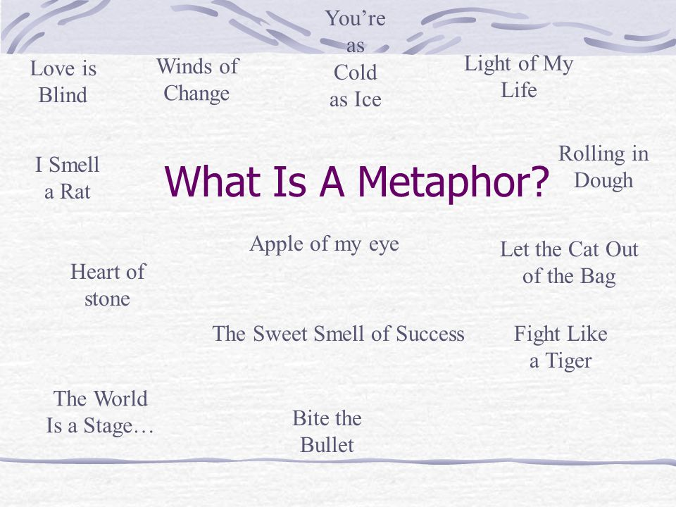 What Is A Metaphor? Heart of stone Apple of my eye Rolling in Dough Light of My Life Winds of Change You're as Cold as Ice The Sweet Smell of SuccessF