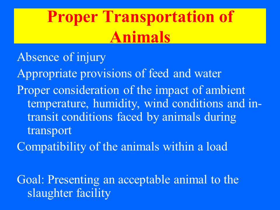 Proper Transportation of Animals Absence of injury Appropriate provisions of feed and water Proper consideration of the impact of ambient temperature, humidity, wind conditions and in- transit conditions faced by animals during transport Compatibility of the animals within a load Goal: Presenting an acceptable animal to the slaughter facility