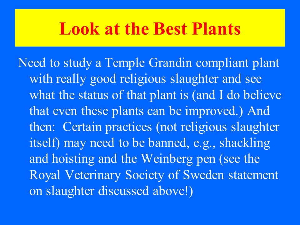 Look at the Best Plants Need to study a Temple Grandin compliant plant with really good religious slaughter and see what the status of that plant is (and I do believe that even these plants can be improved.) And then: Certain practices (not religious slaughter itself) may need to be banned, e.g., shackling and hoisting and the Weinberg pen (see the Royal Veterinary Society of Sweden statement on slaughter discussed above!)