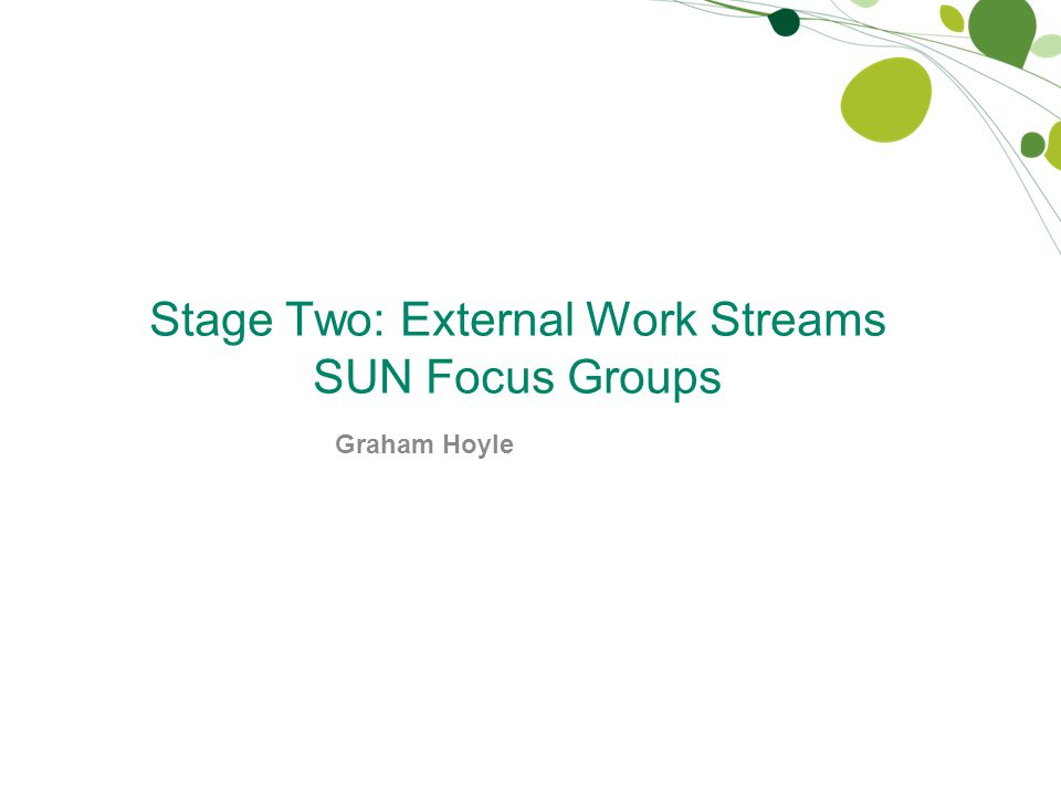 Stage Two: External Work Streams SUN Focus Groups Graham Hoyle