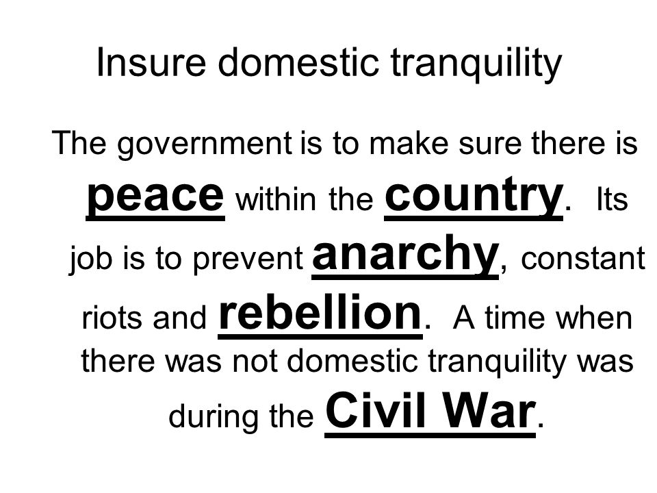 Insure domestic tranquility The government is to make sure there is peace within the country. Its job is to prevent anarchy, constant riots and rebell