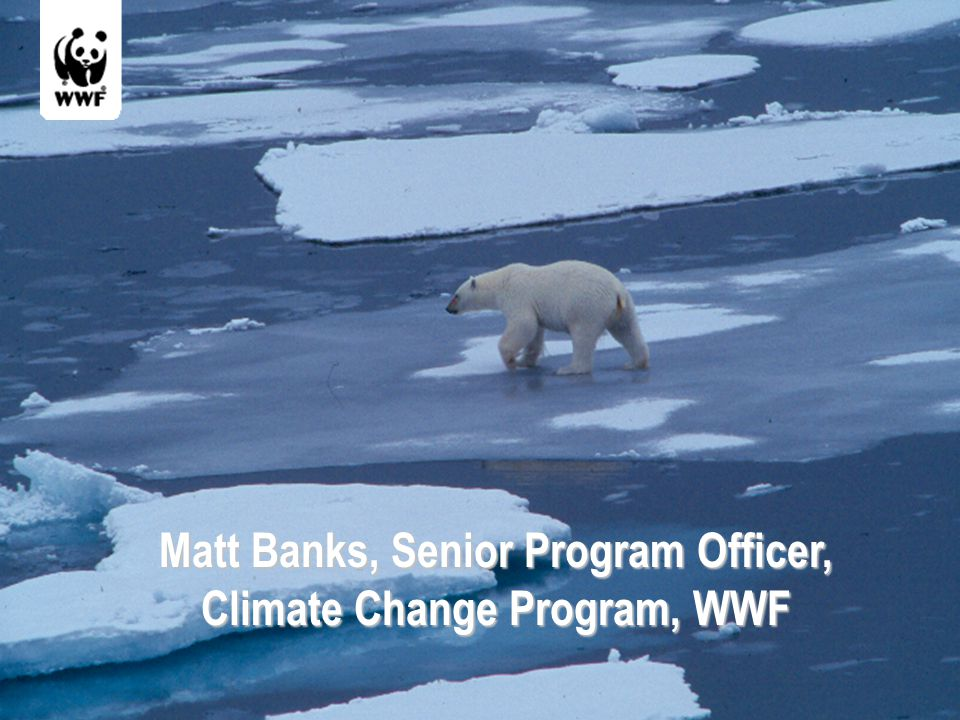 Matt Banks, Senior Program Officer, Climate Change Program, WWF