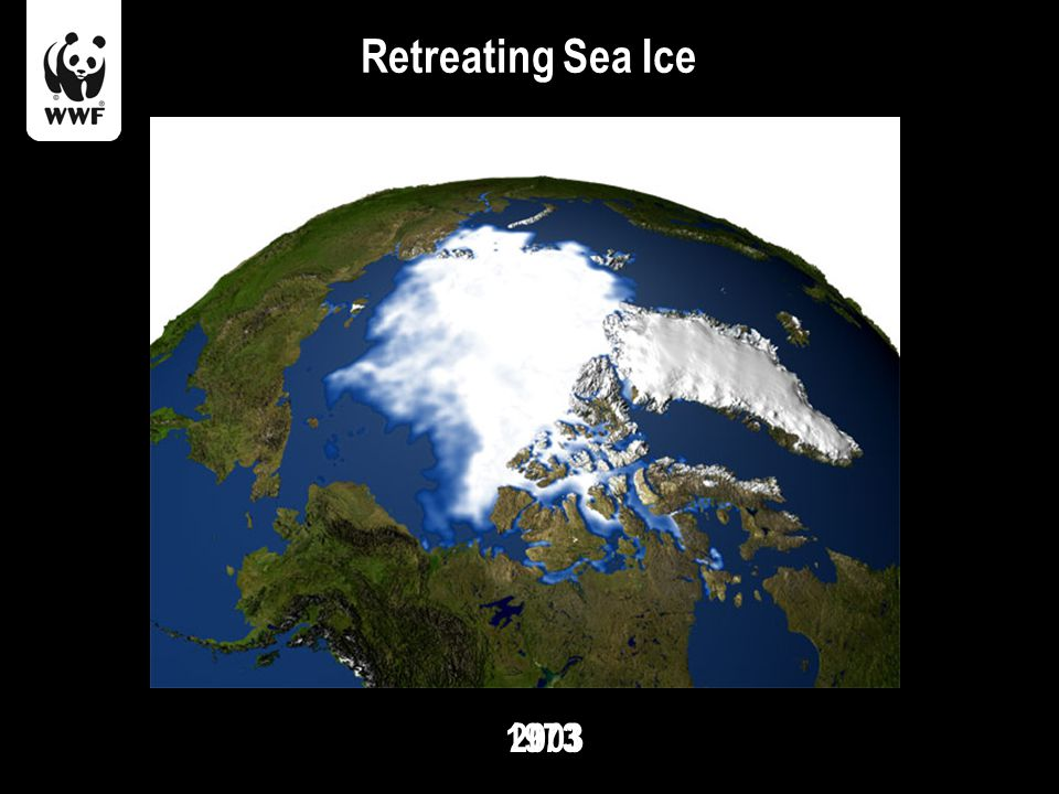 Retreating Sea Ice 19732003