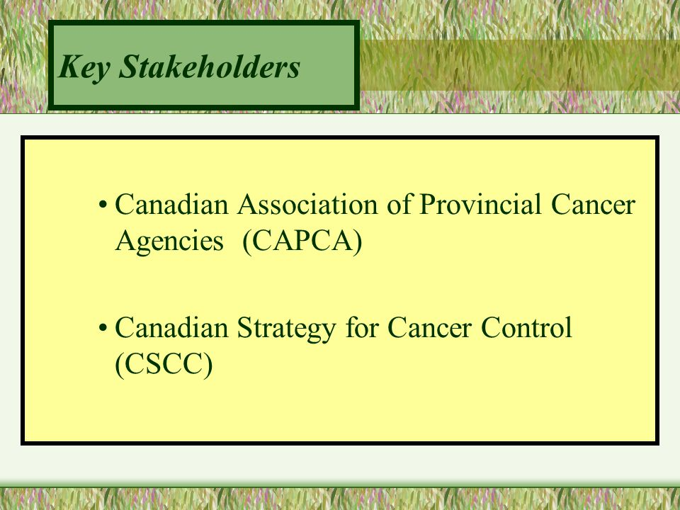 Standards of Practice: Review Critical Review 1.Provincial Supportive Care Leaders –CAPCA & CSCC –Administrators at BCCA and HRCC 2.Medical Oncologist ( Director of Supportive Care) 3.Provincial Groups of Dietitians –Ontario and British Columbia 4.