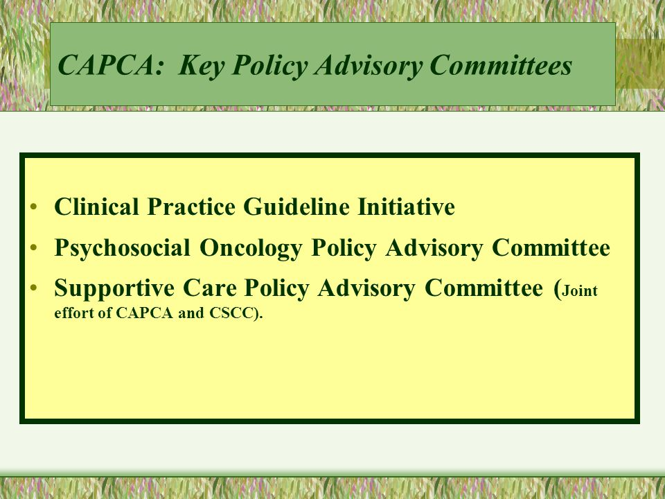 Standards of Practice Programs and Services Section III:Oncology Nutrition Services Section IV:Research Section V:Education and Training Section VI:Evaluation of Programs and Services