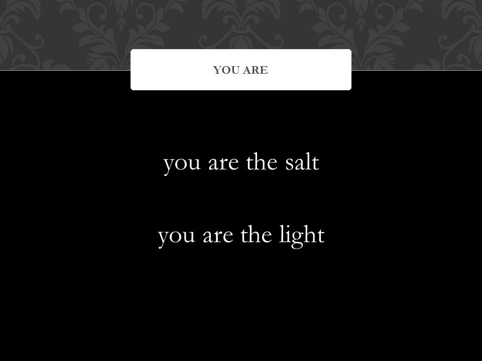 you are the salt you are the light YOU ARE