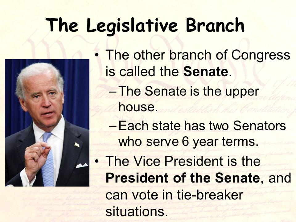 The Legislative Branch The other branch of Congress is called the Senate.