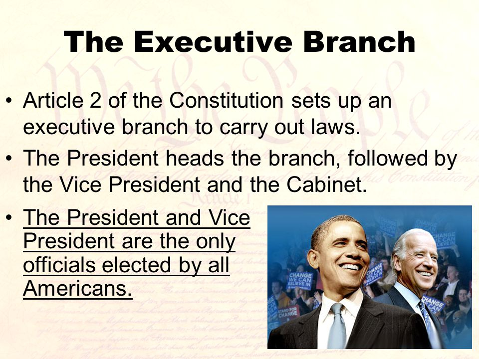 The Executive Branch Article 2 of the Constitution sets up an executive branch to carry out laws.