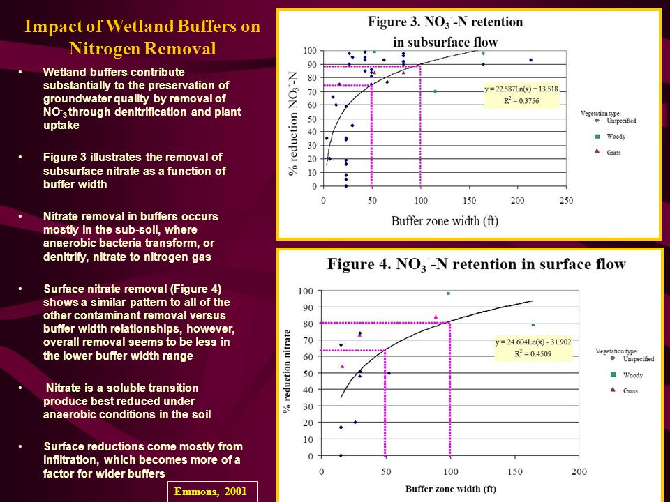 Impact of Wetland Buffers on Nitrogen Removal Wetland buffers contribute substantially to the preservation of groundwater quality by removal of NO - 3 through denitrification and plant uptake Figure 3 illustrates the removal of subsurface nitrate as a function of buffer width Nitrate removal in buffers occurs mostly in the sub-soil, where anaerobic bacteria transform, or denitrify, nitrate to nitrogen gas Surface nitrate removal (Figure 4) shows a similar pattern to all of the other contaminant removal versus buffer width relationships, however, overall removal seems to be less in the lower buffer width range Nitrate is a soluble transition produce best reduced under anaerobic conditions in the soil Surface reductions come mostly from infiltration, which becomes more of a factor for wider buffers Emmons, 2001