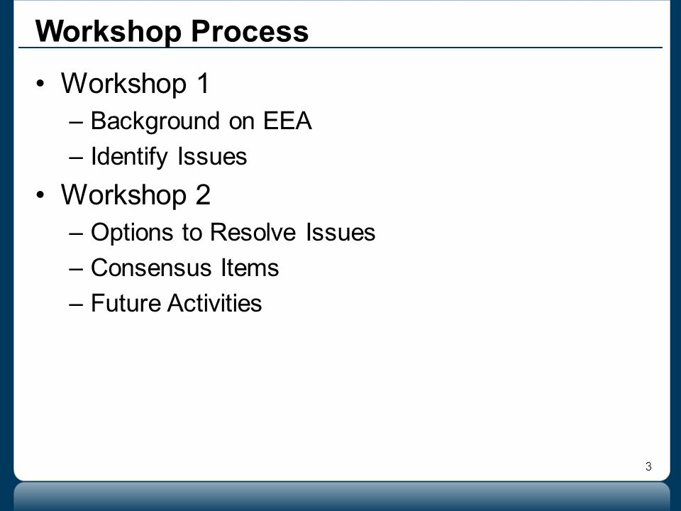3 Workshop 1 –Background on EEA –Identify Issues Workshop 2 –Options to Resolve Issues –Consensus Items –Future Activities Workshop Process