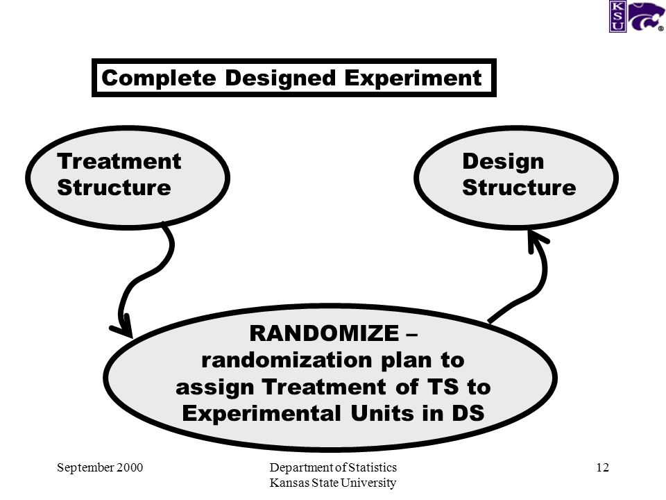 September 2000Department of Statistics Kansas State University 12 Complete Designed Experiment Treatment Structure Design Structure RANDOMIZE – randomization plan to assign Treatment of TS to Experimental Units in DS