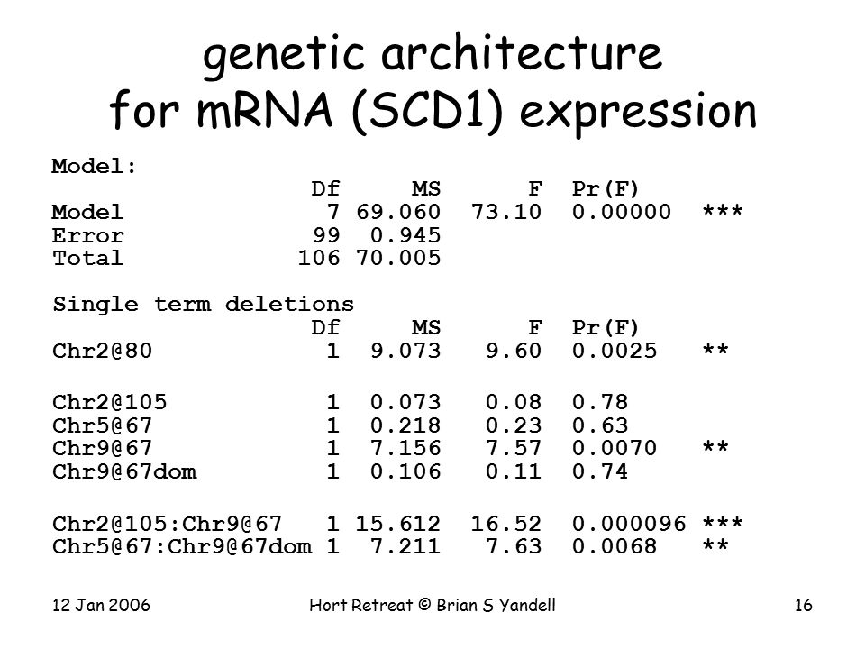 12 Jan 2006Hort Retreat © Brian S Yandell16 genetic architecture for mRNA (SCD1) expression Model: Df MS F Pr(F) Model 7 69.060 73.10 0.00000 *** Error 99 0.945 Total 106 70.005 Single term deletions Df MS F Pr(F) Chr2@80 1 9.073 9.60 0.0025 ** Chr2@105 1 0.073 0.08 0.78 Chr5@67 1 0.218 0.23 0.63 Chr9@67 1 7.156 7.57 0.0070 ** Chr9@67dom 1 0.106 0.11 0.74 Chr2@105:Chr9@67 1 15.612 16.52 0.000096 *** Chr5@67:Chr9@67dom 1 7.211 7.63 0.0068 **