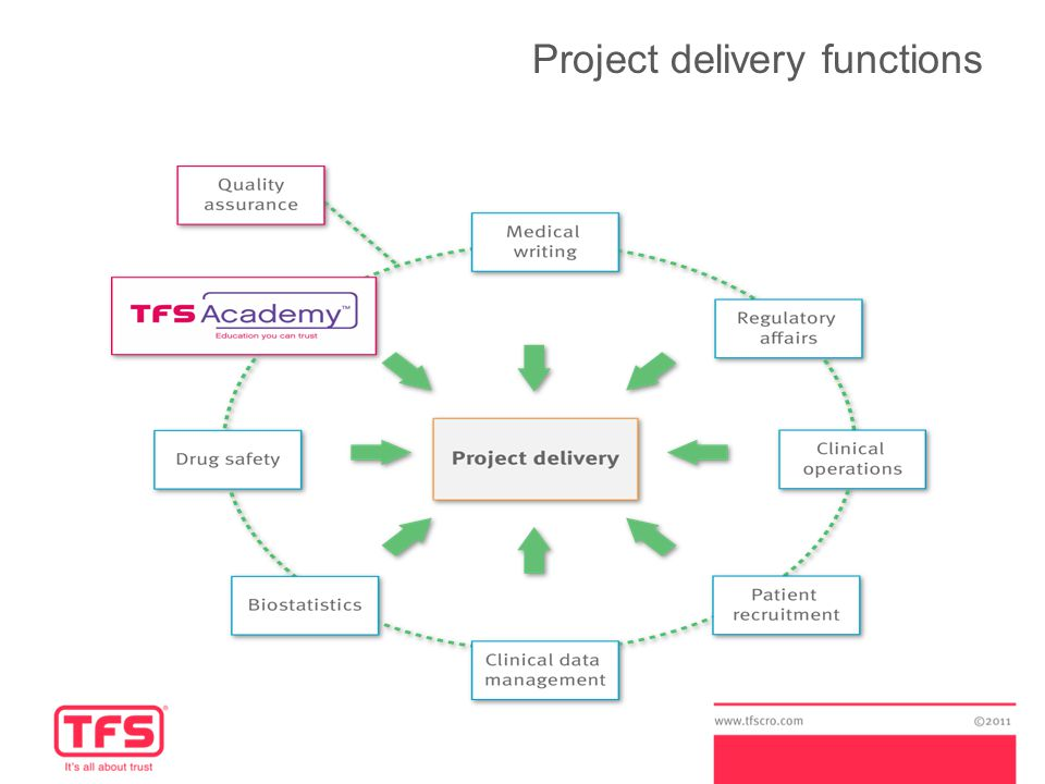 Project delivery functions