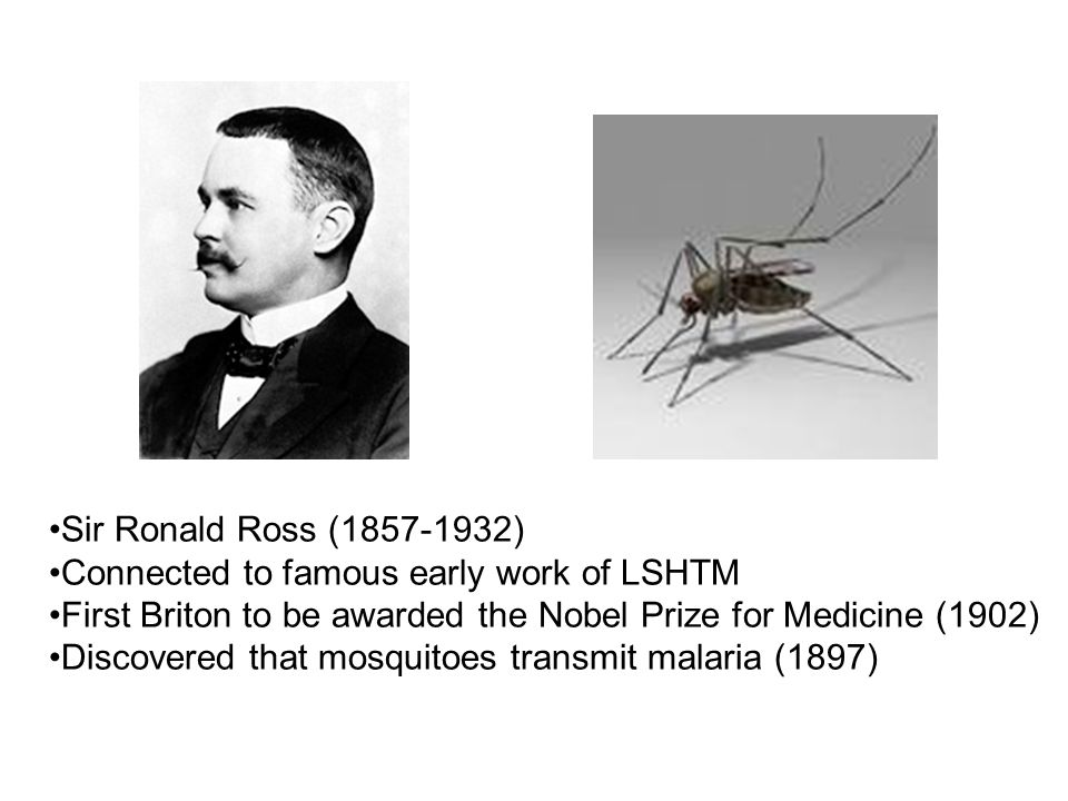 Sir Ronald Ross (1857-1932) Connected to famous early work of LSHTM First Briton to be awarded the Nobel Prize for Medicine (1902) Discovered that mos