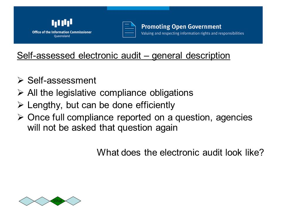 Self-assessed electronic audit – general description  Self-assessment  All the legislative compliance obligations  Lengthy, but can be done efficiently  Once full compliance reported on a question, agencies will not be asked that question again What does the electronic audit look like.