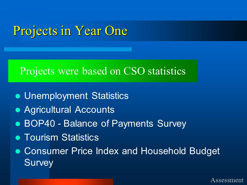 Projects in Year One Unemployment Statistics Agricultural Accounts BOP40 - Balance of Payments Survey Tourism Statistics Consumer Price Index and Household Budget Survey Assessment Projects were based on CSO statistics