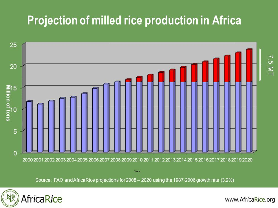 Projection of milled rice production in Africa 7.5 MT Source : FAO and AfricaRice projections for 2008 – 2020 using the 1987-2006 growth rate (3.2%)