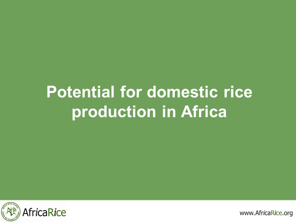 Potential for domestic rice production in Africa