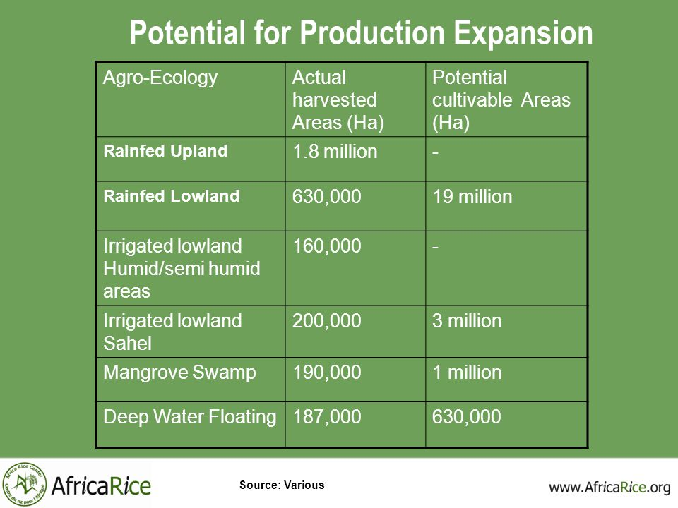 Potential for Production Expansion Agro-EcologyActual harvested Areas (Ha) Potential cultivable Areas (Ha) Rainfed Upland 1.8 million- Rainfed Lowland