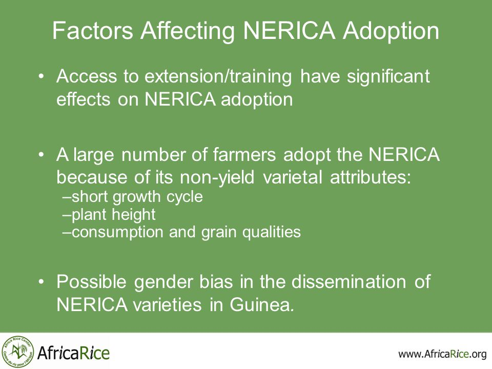 Access to extension/training have significant effects on NERICA adoption A large number of farmers adopt the NERICA because of its non-yield varietal