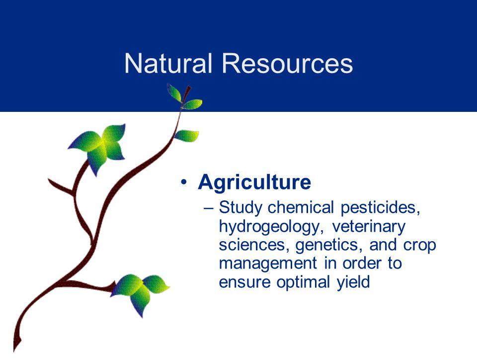 Agriculture –Study chemical pesticides, hydrogeology, veterinary sciences, genetics, and crop management in order to ensure optimal yield Natural Resources