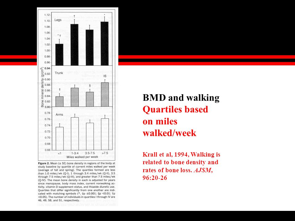 BMD and walking Quartiles based on miles walked/week Krall et al, 1994, Walking is related to bone density and rates of bone loss.