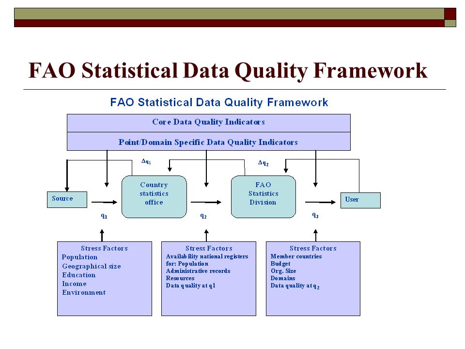 FAO Statistical Data Quality Framework