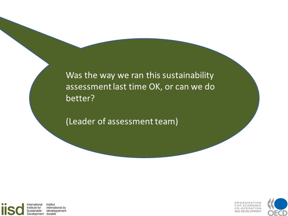 Was the way we ran this sustainability assessment last time OK, or can we do better? (Leader of assessment team)