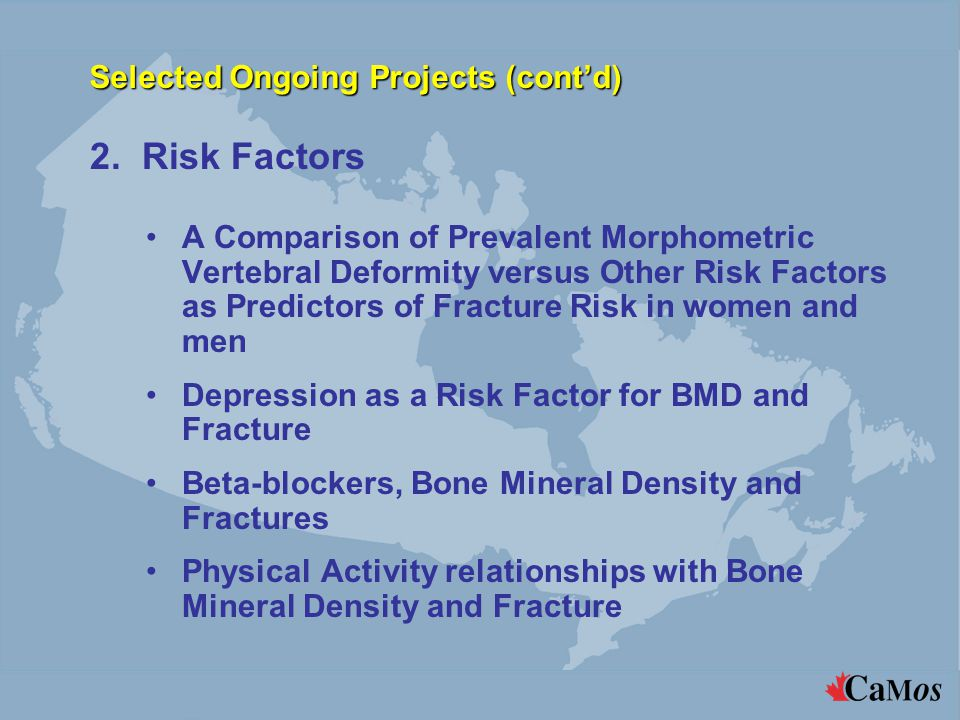 Selected Ongoing Projects (cont'd) A Comparison of Prevalent Morphometric Vertebral Deformity versus Other Risk Factors as Predictors of Fracture Risk in women and men Depression as a Risk Factor for BMD and Fracture Beta-blockers, Bone Mineral Density and Fractures Physical Activity relationships with Bone Mineral Density and Fracture 2.
