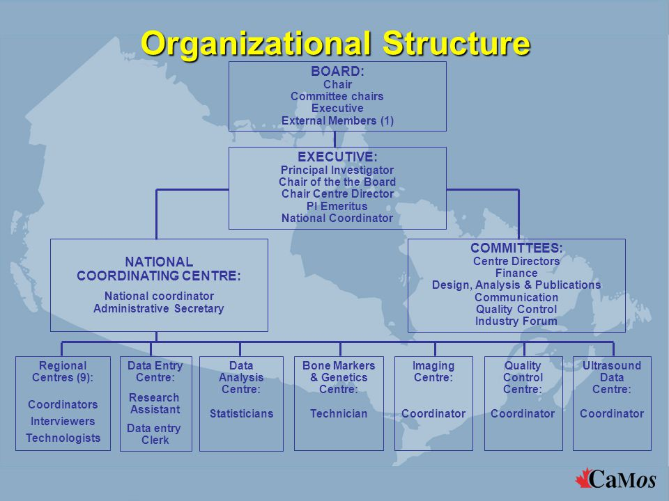Organizational Structure BOARD: Chair Committee chairs Executive External Members (1) EXECUTIVE: Principal Investigator Chair of the the Board Chair C
