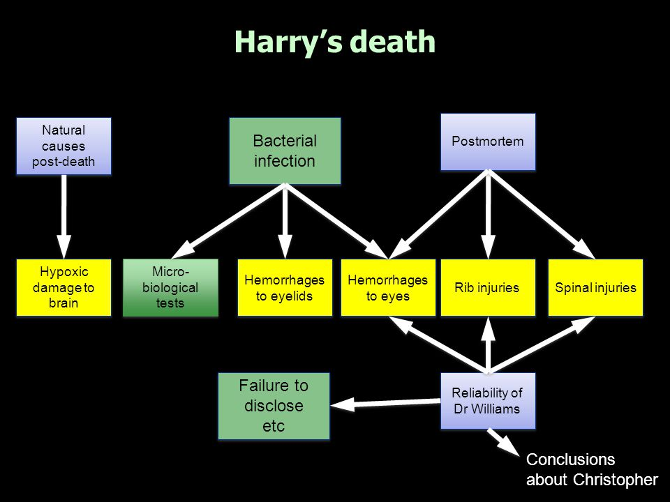Harry's death Hypoxic damage to brain Hemorrhages to eyelids Hemorrhages to eyes Natural causes post-death Natural causes post-death Postmortem Rib in