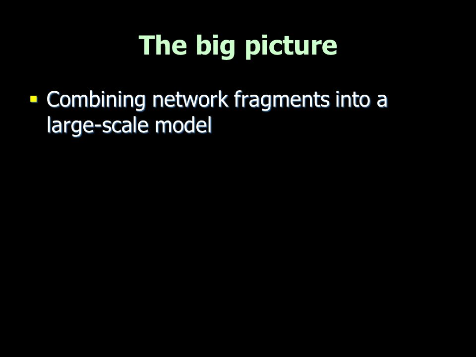 The big picture  Combining network fragments into a large-scale model