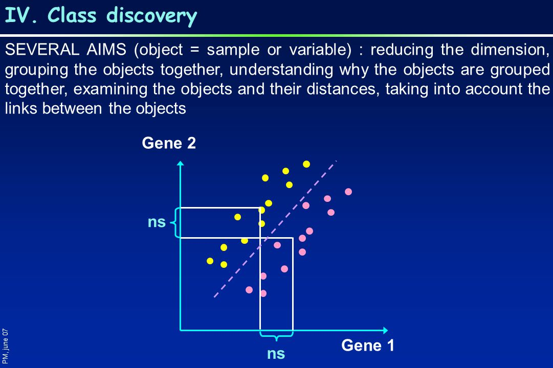 IV. Class discovery PM, june 07 Gene 1 Gene 2 ns SEVERAL AIMS (object = sample or variable) : reducing the dimension, grouping the objects together, u
