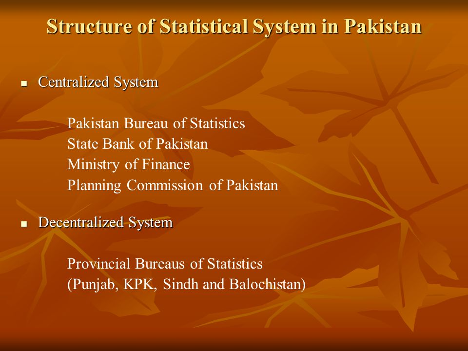 Brief History of PBS After independence of Pakistan, Central Statistical Office (CSO) was setup by the Government of Pakistan in 1950 as an attached department of Economic Affairs Division.