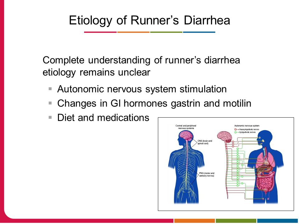 Etiology of Runner's Diarrhea Complete understanding of runner's diarrhea etiology remains unclear  Autonomic nervous system stimulation  Changes in GI hormones gastrin and motilin  Diet and medications