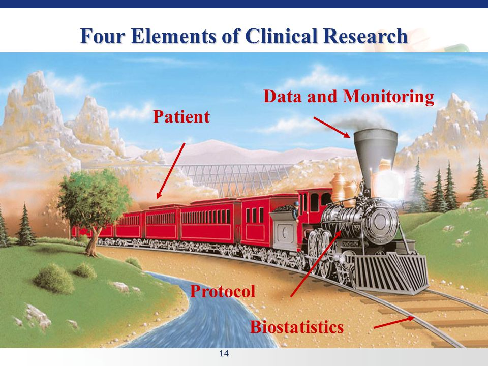 14 Four Elements of Clinical Research Data and Monitoring Patient Protocol Biostatistics
