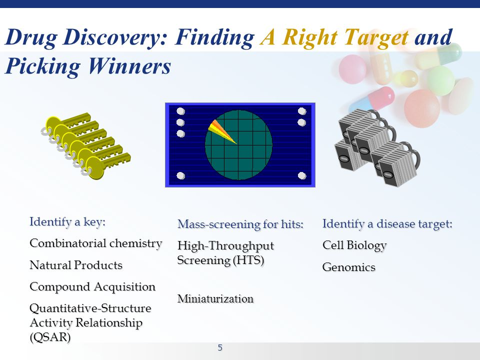 5 Drug Discovery: Finding A Right Target and Picking Winners Identify a disease target: Cell Biology Genomics Mass-screening for hits: High-Throughput Screening (HTS) Miniaturization Identify a key: Combinatorial chemistry Natural Products Compound Acquisition Quantitative-Structure Activity Relationship (QSAR)