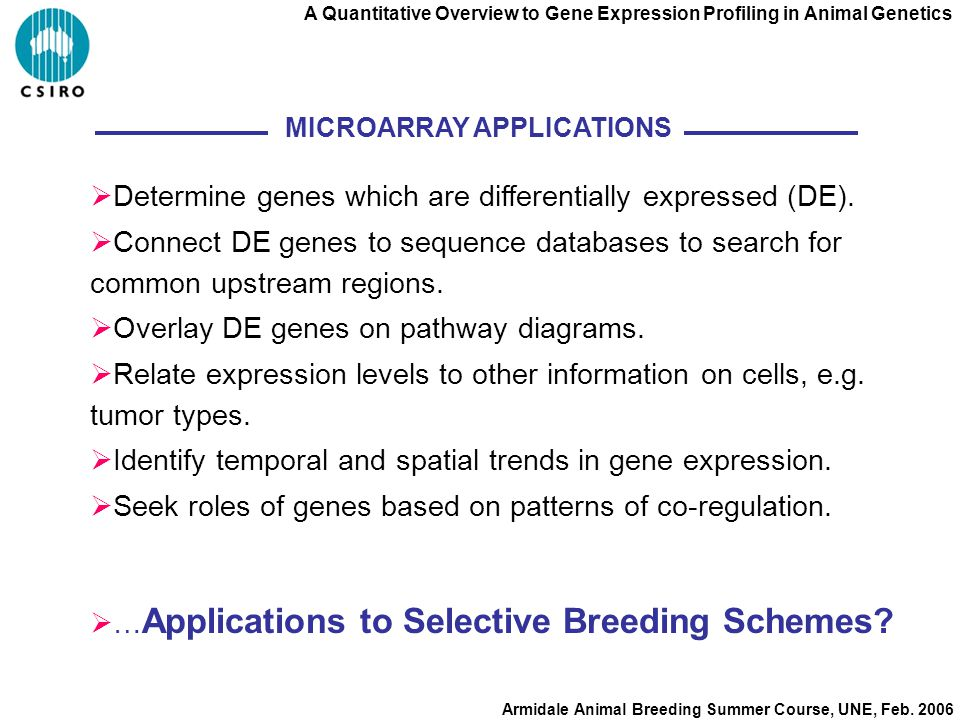 A Quantitative Overview to Gene Expression Profiling in Animal Genetics Armidale Animal Breeding Summer Course, UNE, Feb.