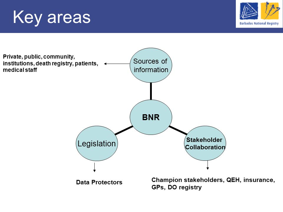 Key areas Data Protectors Private, public, community, institutions, death registry, patients, medical staff Champion stakeholders, QEH, insurance, GPs, DO registry