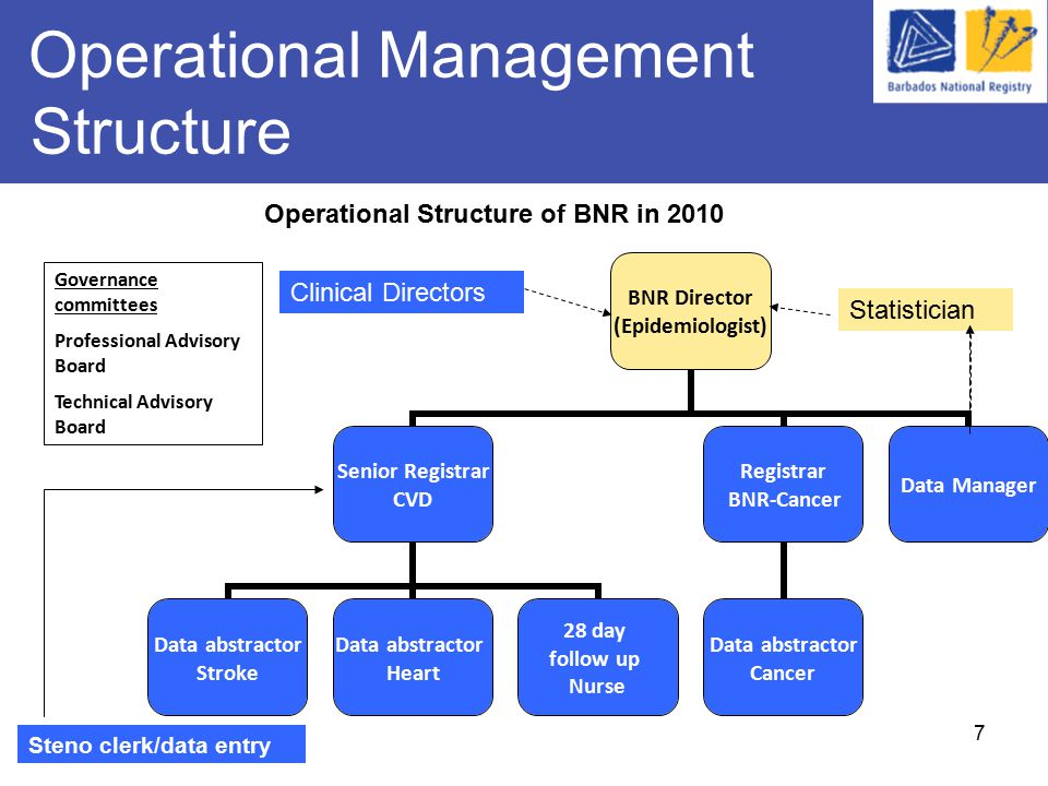 7 Operational Management Structure BNR Director (Epidemiologist) Senior Registrar CVD Data abstractor Stroke Data abstractor Heart 28 day follow up Nurse Registrar BNR-Cancer Data abstractor Cancer Data Manager Governance committees Professional Advisory Board Technical Advisory Board Operational Structure of BNR in 2010 Statistician Steno clerk/data entry Clinical Directors
