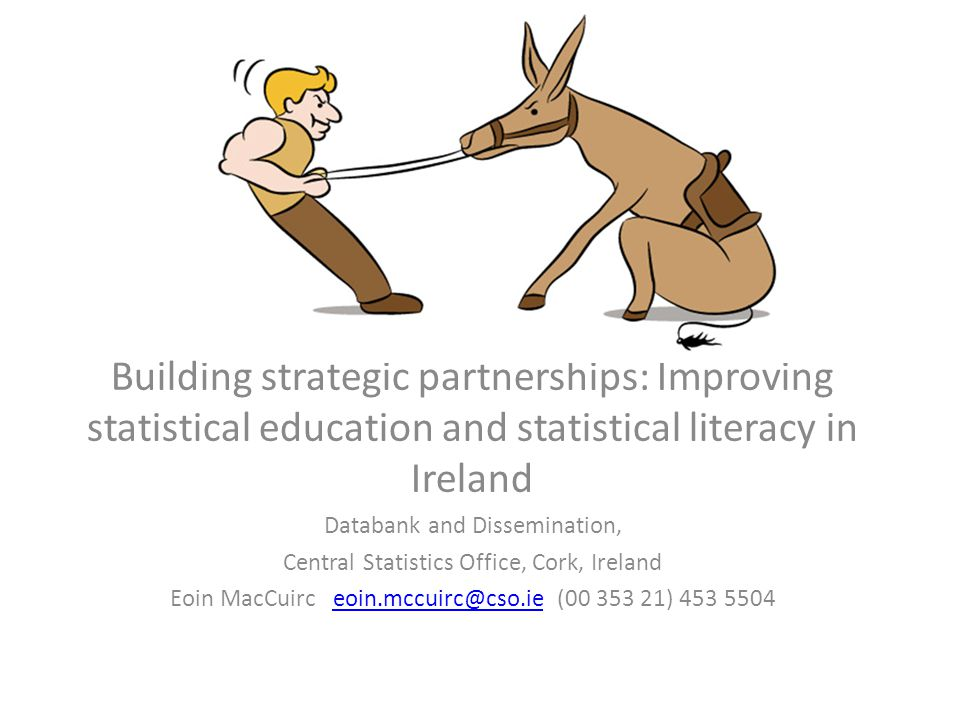 Building strategic partnerships: Improving statistical education and statistical literacy in Ireland Databank and Dissemination, Central Statistics Office, Cork, Ireland Eoin MacCuirc eoin.mccuirc@cso.ie (00 353 21) 453 5504eoin.mccuirc@cso.ie
