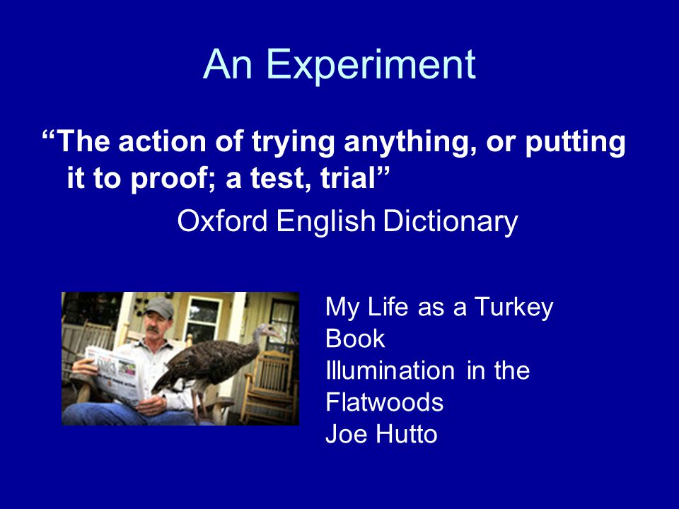 An Experiment The action of trying anything, or putting it to proof; a test, trial Oxford English Dictionary My Life as a Turkey Book Illumination in the Flatwoods Joe Hutto