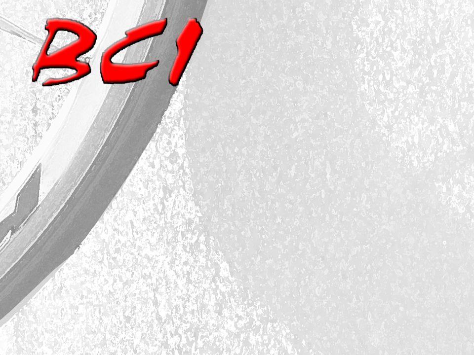 LEADERSHIP NOMINEES for 2013 (9 Elected Offices) President Vice President Secretary Treasurer Ride Coordinator Communications Statistician Membership Hospitality Monica McCarthy Marc Urias Debbie Cetin Rich McCarthy Randy Profeta Bruce Darby